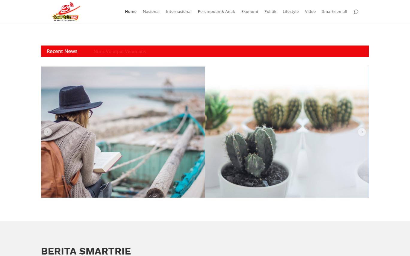 jasa bikin website portal berita