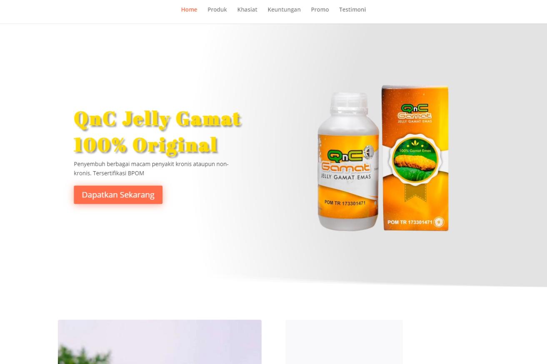 jasa pembuatan website minuman kesehatan